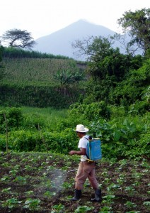 Backpack Sprayer in El Salvador